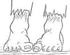 cartoon feet drawing