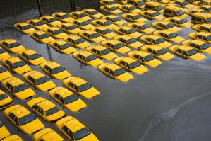 Sandy Yellow Cabs