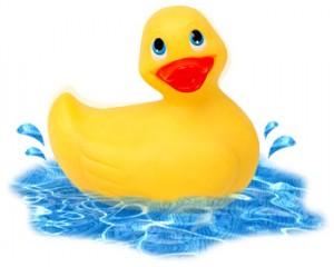 rubber duckie