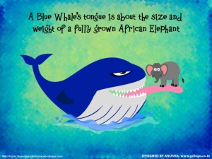 blue-whale-tongue-n-elephant