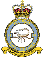 84 squadron crest