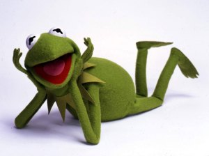 Kermit the muppets