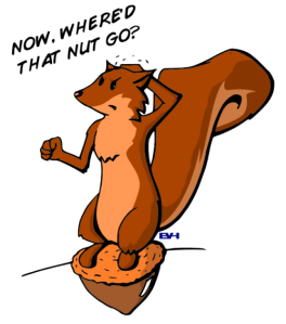 forgetful_squirrel