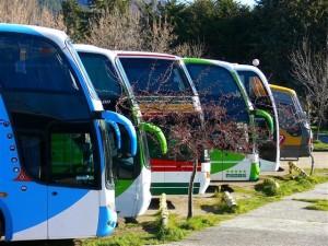 bus companies