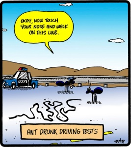 drunk_ant_test