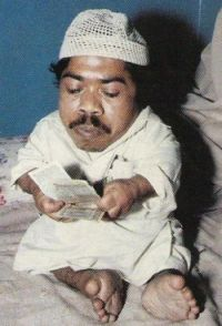 gul-mohammed