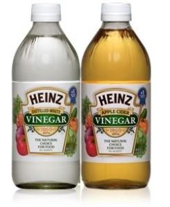 Did You Know vinegar