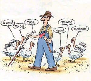 pun blind-turkey-farmer