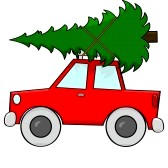 pun car tree