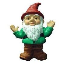 pun gnome-04