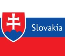 pun slovakia