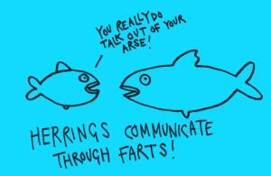 herring farts
