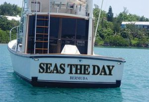 picture pun 001 Seas The Day