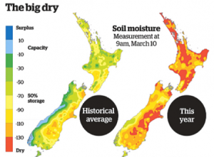 New Zealand drought 2013