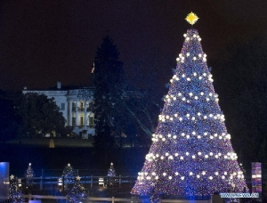 White House Christmas lights