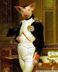 pig Napoleon