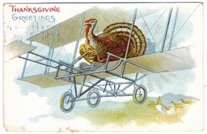 pilot turkey