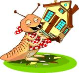 termite cartoon