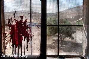 window splattered with paint