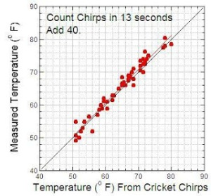 cricket chirp and temperature