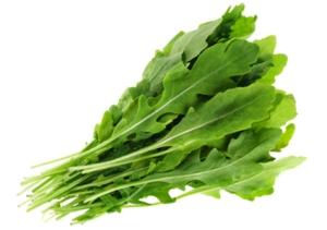 rocket lettuce
