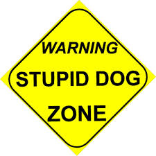 stupid dog zone sign
