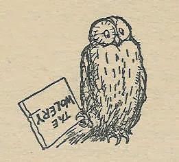 dyslexic owl