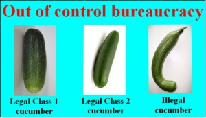 cucumber-legality