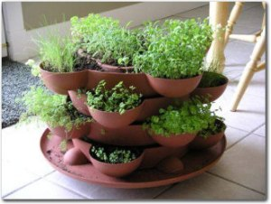 Indoor-Herb-Garden
