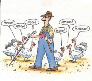turkey-thanksgiving-jokes