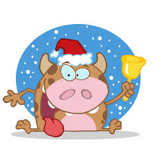 cow at the North Pole