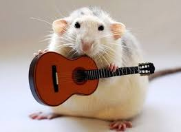 Male mice sing love songs for female mice