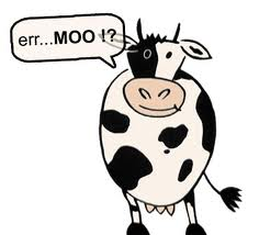 mooing