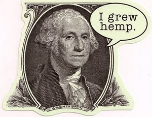 George Washington grew marijuana