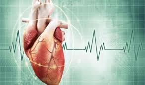 heart has its own electrical impulse