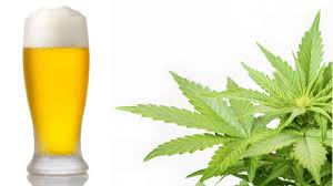 Marijuana and beer