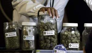 marijuana used to be for sale in pharmacies