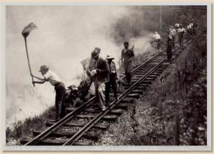 Victoria Australia Black Friday fires 1939