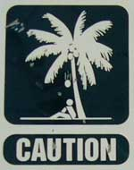 Do not sit under coconut trees