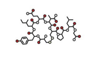 cuddle hormone oxytocin