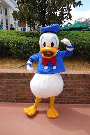 Donald Duck at Disneyworld
